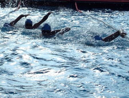 Schwimmen im Team
